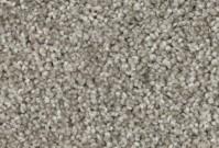 Beaulieu 12' Luxurious Shine - Neutra ~ $15.99 /syd